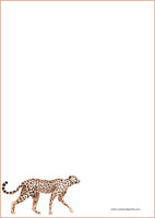 Cheetah - writing papers (A4, 10s) #1