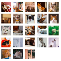 Sticker box - Cats (46 stickers)