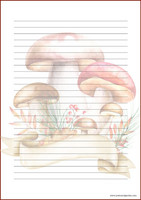 Mushrooms - writing papers (A5, 10s) #1