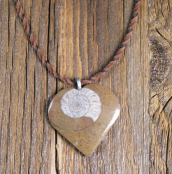 Riipus ammoniitti, sydämen muotoinen fossiiliriipus