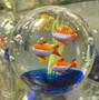 Lasipallo: kalat akvaariossa