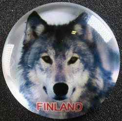 Magneetti Susi, Finland, 35mm pyöreä