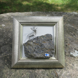 Taulu Poro kivellä, hopeoitu tinaporo kivellä