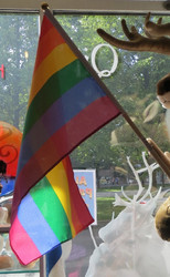 Lippu Pride-lippu, 29x45cm, kantatut reunat, puuvarsi 60cm