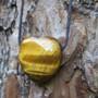 Kaulakoru tiikerinsilmäsydän 3x3cm porattu riipus liukusolmunauhassa