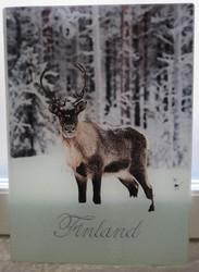 Leikkuulauta/tarjoilualusta: Poro, Finland, koko 20x28cm, lasia