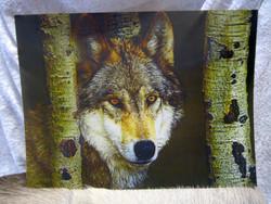 Juliste 3D-kuva susi katsoo puiden välistä, koko 29,5cmx39,5cm