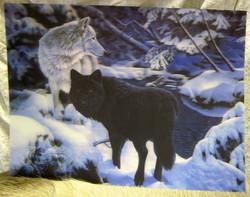 Juliste 3D-kuva susipari, musta ja valkoinen susi, 29,5cmx39,5cm