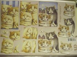 3D-korttikuva: A4 arkki kissat