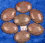 Kapussi Jaspis, pikkufossiilit 22x30mm ovaali cabochon