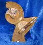 Fossiiliveistos ruskea, ammoniitteja ja oikosarvifossiileita 18x22cm