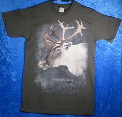 T-paita poron pää grafiitinharmaa