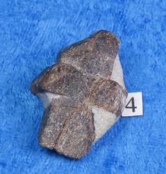 Stauroliitti  ristikivi amulettikivi 15g 35x22mm nro4