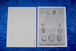 Postikortti shamaanirumpuja Museoviraston kokoelmasta, mustavalkoinen
