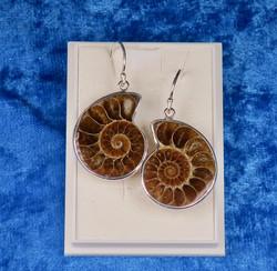Korvakorut Ammoniitti halkaistu fossiili 2-3cm 925-hopea