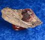 Almandiini granaattikide, muskoviittia n.59g keräilykivi