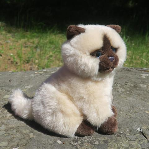 Pehmolelu kissa beige, jolla ruskea naama korvat ja tassut istuva 20cm