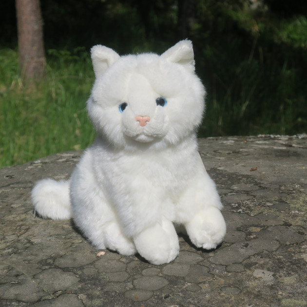 Kissa Pehmolelu