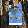 Korvakorut suomileijona kullanvärinen 25mm nikkelivapaat