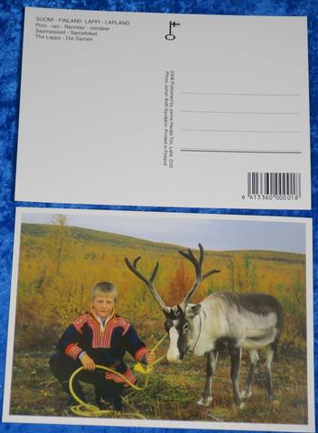 Postikortti Saamelaiset  poika ja poro, ruskaa
