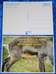 Postikortti Poro - lapin lomalla on pitkää ja päätöntä...