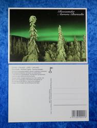 Postikortti Aurora Borealis, vihreät revontulet ja tykkylumisia puita