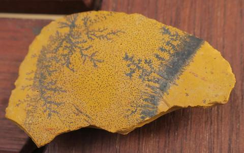 Mookaiittijaspis, dendriitti 12g 45x25x9mm Australia