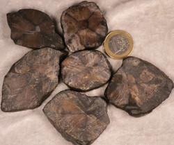 Kiastoliitti ristikivi raaka, hiomaton siivu 25-30g Kiina