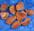 Aurinkokivi- Sunstone- Cолнечный камень maasälpä