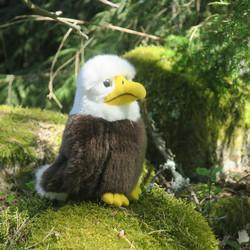 Pehmolelu Kotkan poikanen, istuva lintu, korkeus 17cm
