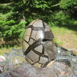 Septaria kivimuna Dragon egg iso 1750g, kiehtova kideonkalo