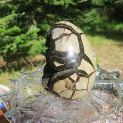 Septaria suuri kivimuna Dragon egg  1750g, kiehtova kideonkalo