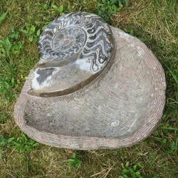 Fossiilimalja 15,2kg,  40x45cm iso ammoniitti reunalla