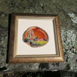 Taulu 3 palaa Muonionalustan meteoriittia ja spektroliitti akaatilla