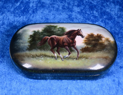 Rasia: Hevonen juoksee niityllä puurasia saranalla