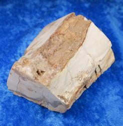 Kivettynyt puu raaka 173g, korkeus 65mm 23E Madagaskar