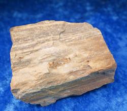 Kivettynyt puu raaka 149g, korkeus 60mm  23H Madagaskar
