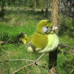 Pehmolelu Viherpeippo, lintu ääntelee luonnollisesti