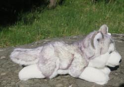 Pehmolelu Husky, makaava, kirsusta hännänpäähän 34cm