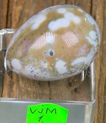 Kivimuna Valtamerijaspis n.35mm muna nro 1-4 Madagaskar