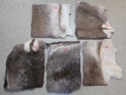 Porontaljasta istuinalusta, ilmakuivattu -Reindeer hide seat cover