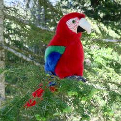 Pehmolelu Papukaija, 24cm, iso punainen