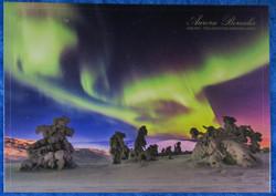 Postikortti Aurora Borealis. Revontulet ja tykkylumiset puut