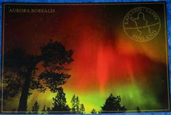 Postikortti punaiset revontulet ja puita