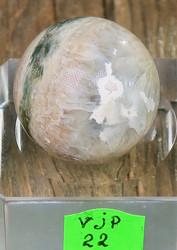Kivipallo Valtamerijaspis nro 21-24 n. 3cm 35g Madagaskar