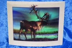 3D-postikortti jättikoko 25x20cm poro ja revontulet