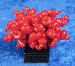 Sormus punainen koralli, näyttävä , koko 18 joustava kuminauha
