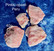 Pinkki opaali Peru 40g 55x45x15mm nro Hiopp2