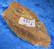 Tiikerinsilmä raaka 489g 145x75x38mm Etelä-Afrikka Ti489 video