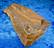 Tiikerinsilmä raaka 370g 115x65x42mm Etelä-Afrikka Ti370 video